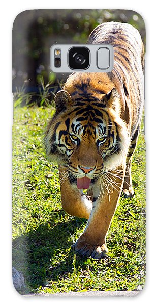 Thirsty Tiger Galaxy Case