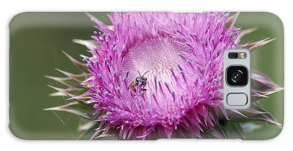 Thistle And The Bee Galaxy Case