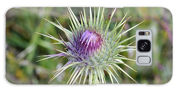 Thistle Flower Galaxy Case by George Atsametakis