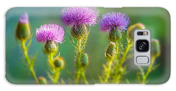 Thistle In The Sun Galaxy Case