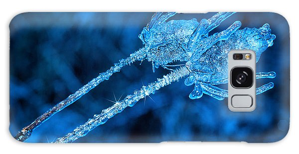 Thistle Plant On Icy Night Galaxy Case