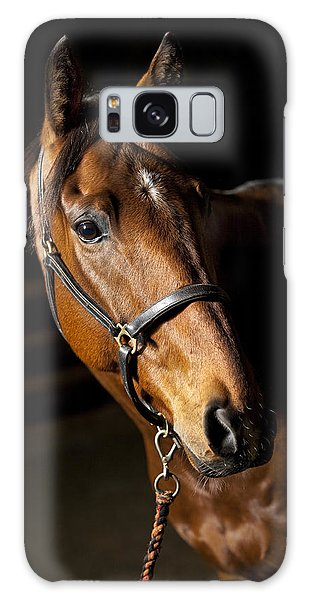 Equine Galaxy Case - Thoroughbred Race Horse by Samuel Whitton
