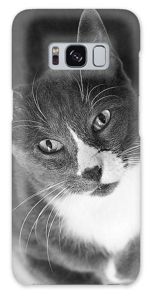 Devotion - Cat Eyes Galaxy Case