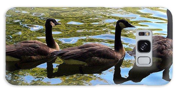 Three Canadian Geese Galaxy Case by Deborah Fay