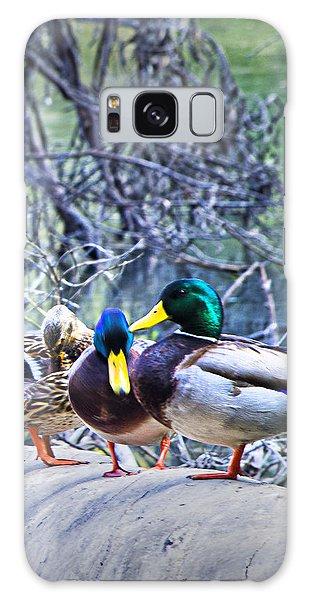 Three Ducks On A Log Galaxy Case by Joseph Hollingsworth