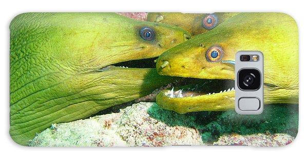 Scuba Diving Galaxy Case - Three Eels by Carey Chen