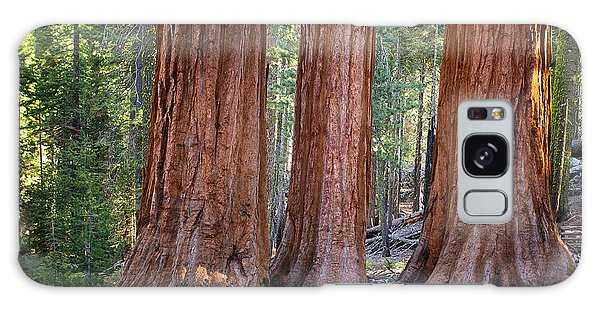 Three Graces Yosemite Galaxy Case