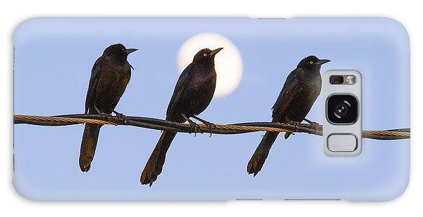 Three Grackles With Full Moon Galaxy Case