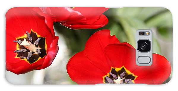 Three In Red  Galaxy Case by Cathy Dee Janes