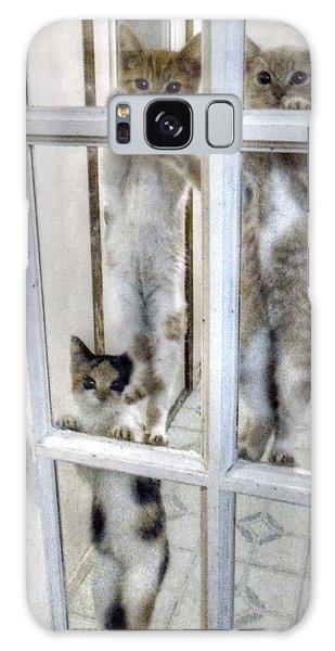 Three Kitten Door Deco Galaxy Case