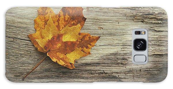 Maple Leaf Art Galaxy Case - Three Leaves by Scott Norris