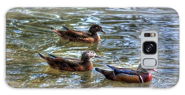 Three Mallard Ducks Galaxy Case by Donald Williams