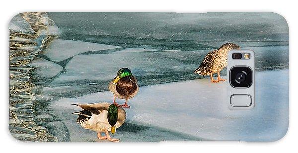 Three Mallards On Partly Frozen Lake Galaxy Case by Gerda Grice