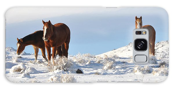 Three Mustangs In Snow Galaxy Case by Vinnie Oakes