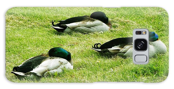 Three Napping Ducks  Galaxy Case