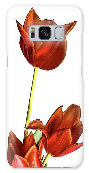 Three Orange Red Tulips Galaxy Case by Linda Matlow