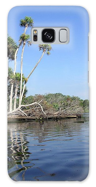 Three Palms Reflected In The Chassahowitzka River Galaxy Case