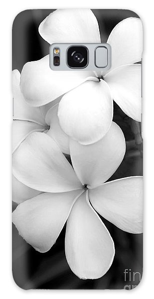 West Galaxy Case - Three Plumeria Flowers In Black And White by Sabrina L Ryan