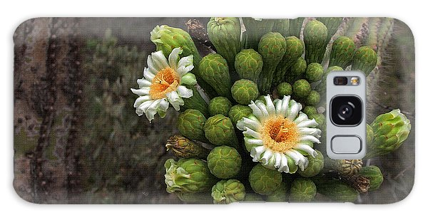 Three Saguaro Blossoms And Many Buds Galaxy Case by Tom Janca