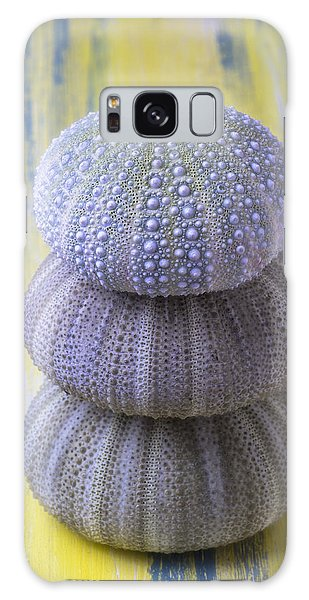 Sea Stacks Galaxy Case - Three Sea Urchins by Garry Gay
