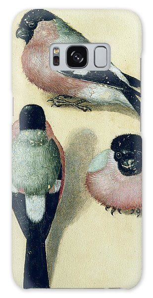 Finch Galaxy S8 Case - Three Studies Of A Bullfinch by Albrecht Durer