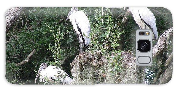 Three Wood Storks Galaxy Case by Ellen Meakin