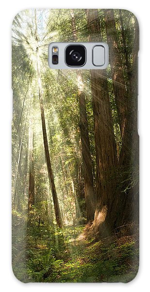 Through The Trees Galaxy Case