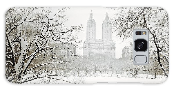 Through Winter Trees - Central Park - New York City Galaxy Case