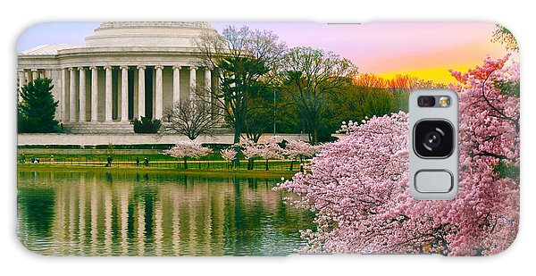 Tidal Basin Morning Galaxy Case