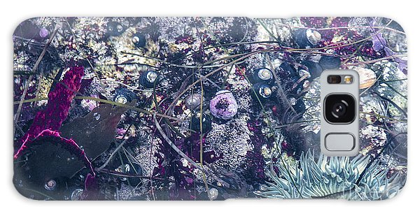 Tidal Pool Assortment Galaxy Case by Terry Rowe