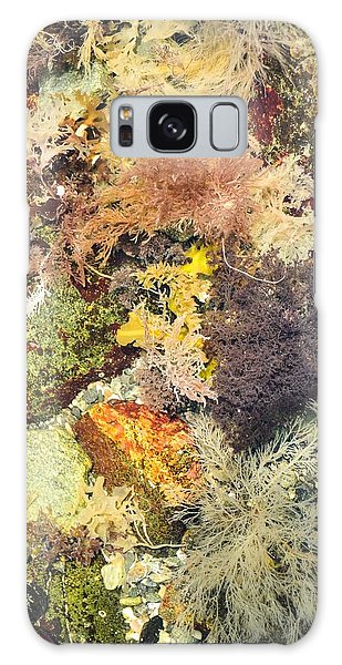 Tidal Pool Color Galaxy Case by Debbie Green