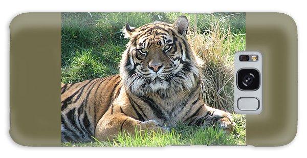 Tiger 2 Galaxy Case