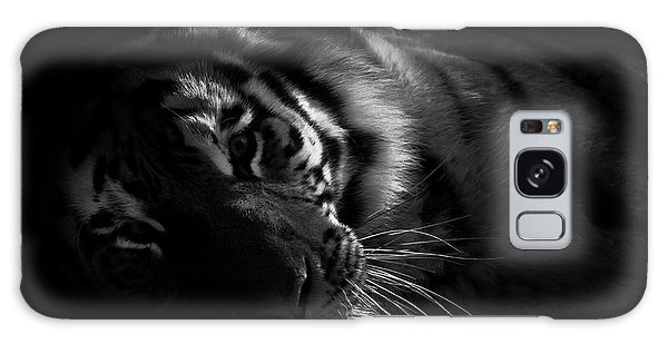 Tiger Beauty Galaxy Case