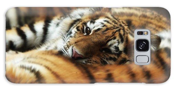 Tiger Cub Resting On Mom's Back Galaxy Case