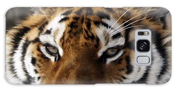 Tiger Head Galaxy Case