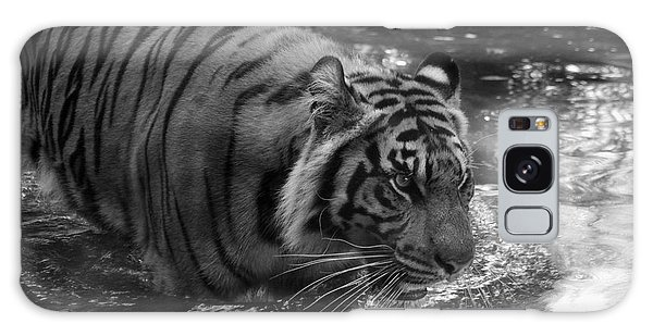 Tiger In The Water Galaxy Case by Lisa L Silva
