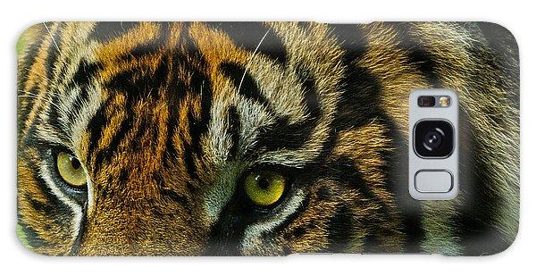 Tiger Galaxy Case by John Johnson