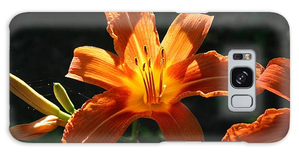 Tiger Lily 1 Galaxy Case