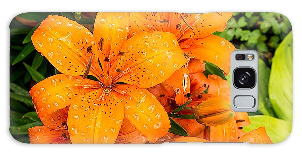 Tiger Lily After Morning Rain Galaxy Case