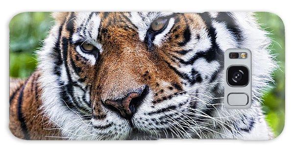 Tiger On Grass Galaxy Case