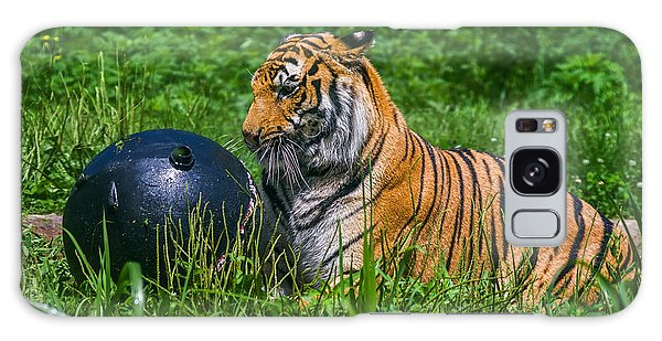 Tiger Playing With Ball Galaxy Case