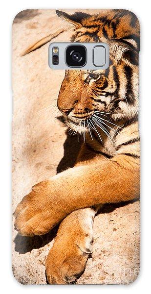Tiger Resting Galaxy Case