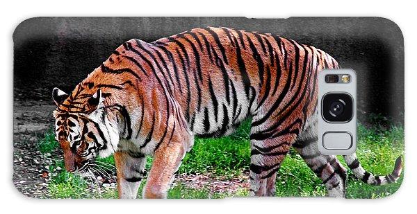 Tiger Tale Galaxy Case