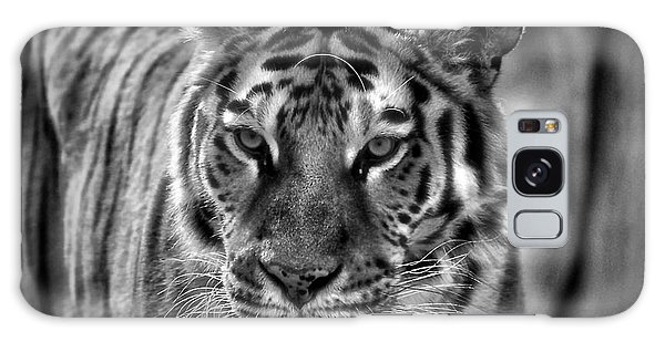 Tiger Tiger Monochrome Galaxy Case