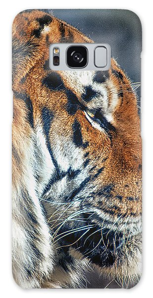 Tiger Watch Galaxy Case by Chris Boulton