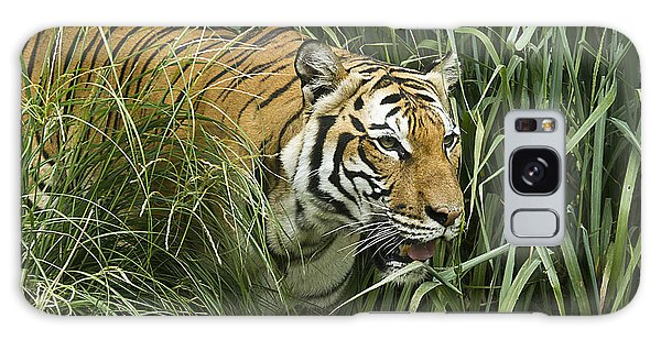 Tiger4 Galaxy Case