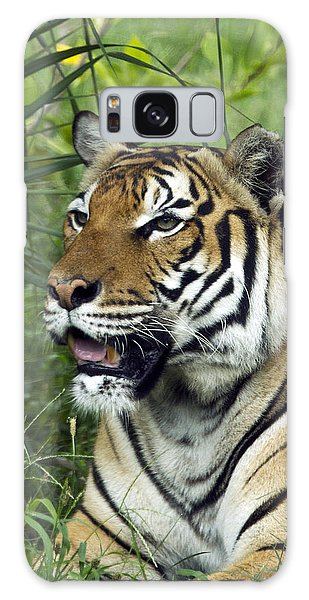 Tiger5 Galaxy Case