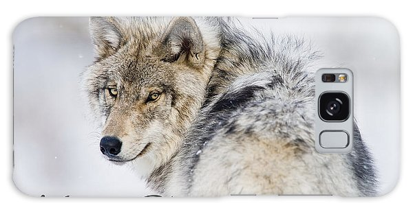 Timber Wolf Christmas Card 2 Galaxy Case