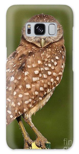 Tiny Burrowing Owl Galaxy Case