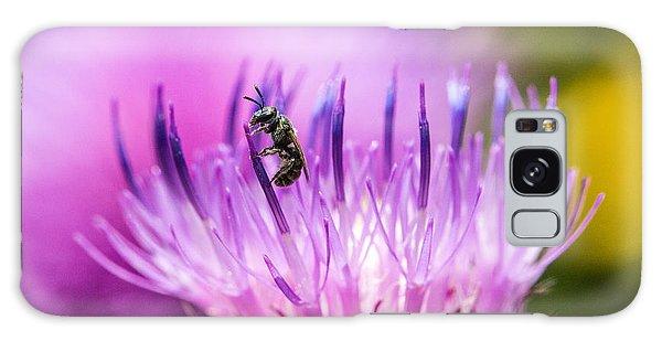 Tiny Dark Bee On Texas Thistle Galaxy Case
